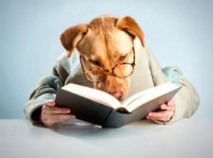 dog_reading