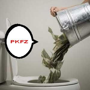 money_down_toilet.jpg3